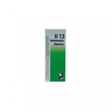 Dr. Reckeweg R13 50ml