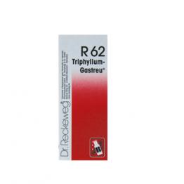 Dr. Reckeweg R62 50ml