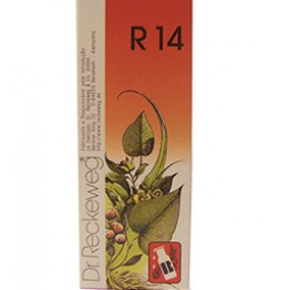 Dr. Reckeweg R14