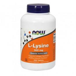 L-Lysine 500mg 100 Cápsulas