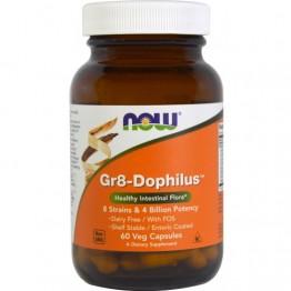 Now Gr8-Dophilus 60 Cápsulas Vegetais