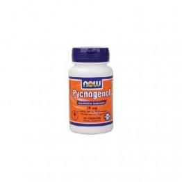 Now Pycnogenol 30 mg 30 Cápsulas Vegetais